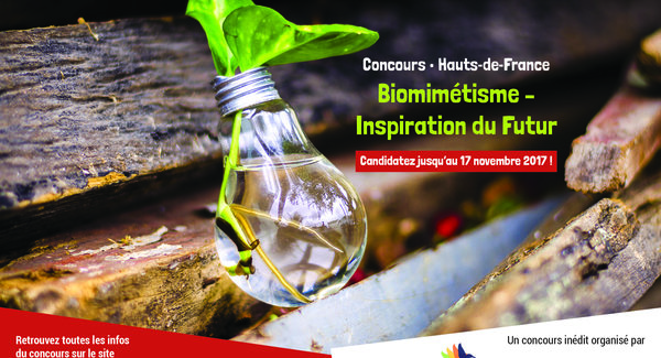 concours recherche et innovation u0026quot biomim u00e9tisme