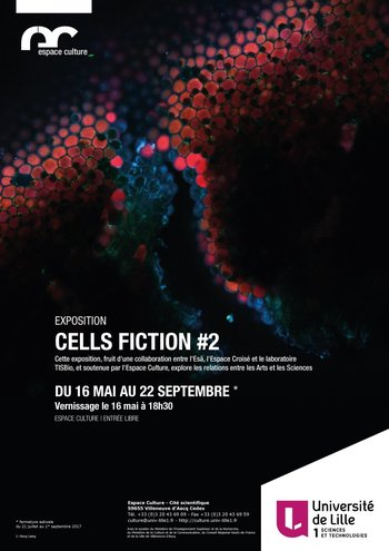 Xl cellsfiction2